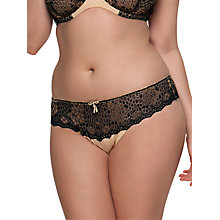 Buy Curvy Kate Temptress Short Briefs, Black / Champagne Online at johnlewis.com