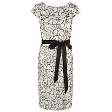 Buy Kaliko Organza Embroidered Dress, Light Neutral Online at johnlewis.com