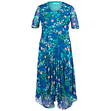 Buy Chesca Floral Mesh Dress, Blue/Multi Online at johnlewis.com