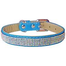 Buy Pet London Glizmo Dog Collar Online at johnlewis.com