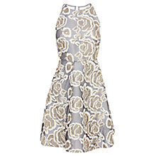 Buy Coast Amelia Embroidered Dress, Mink Online at johnlewis.com