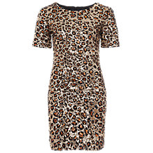 Buy French Connection Leo Lux Leopard Sequin Dress, Gold Multi Online at johnlewis.com