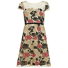Buy Gina Bacconi Floral Embroidered Net Dress, Coral Online at johnlewis.com