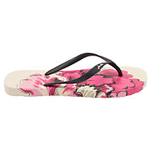 Buy Joules Floral Flip Flops, Cream Online at johnlewis.com