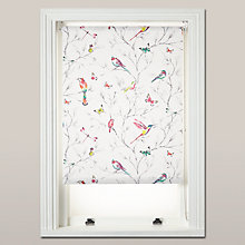 Buy John Lewis Hummingbird Daylight Roller Blind Online at johnlewis.com