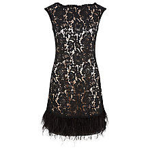 Buy Kaliko Lace Feather Trim Shift Dress, Black/Champagne Online at johnlewis.com