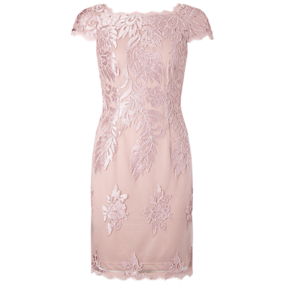 Adrianna Papell Embroidered Mesh Party Dress, Blush