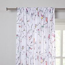 Buy John Lewis Hummingbird Voile Panel, Multi Online at johnlewis.com