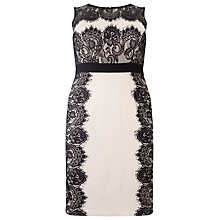 Buy Studio 8 Constance Lace Panel Dress, Blush/Black Online at johnlewis.com