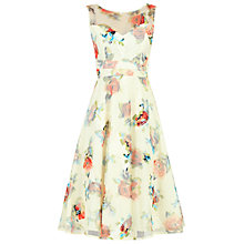 Buy Jolie Moi Floral Lace Printed Fit And Flare Dress, Beige Online at johnlewis.com