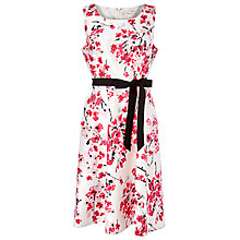 Buy Precis Petite Floral Print Belted Dress, Pink/Multi Online at johnlewis.com