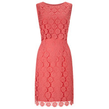 Buy Precis Petite by Jeff Banks Lace Shift Dress, Coral Online at johnlewis.com