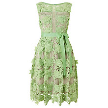 Buy Phase Eight Genie 3D Lace Dress, Apple Green Online at johnlewis.com