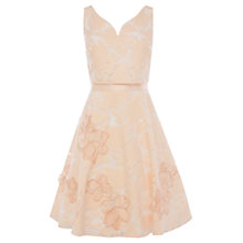 Buy Coast Danya Floral Burnout Dress, Blush Online at johnlewis.com