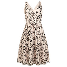 Buy Coast Julia Sprig Artwork Dress, Blush Online at johnlewis.com