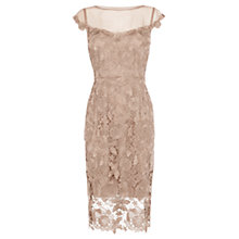 Buy Coast Camille Lace Shift Dress, Oyster Online at johnlewis.com