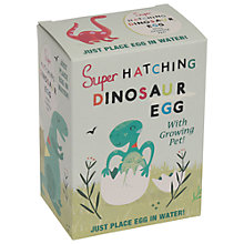 Buy Rex Hatch Your Own Dinosaur Egg Online at johnlewis.com
