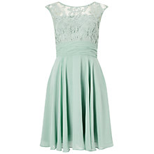 Buy Adrianna Papell Filigree Lace Chiffon Dress, Celadon Online at johnlewis.com