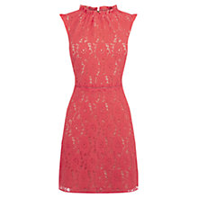 Buy Oasis Lace Dress, Coral Online at johnlewis.com