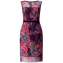 Buy Adrianna Papell Sheer Illusion Sheath Dress, Wine Multi Online at johnlewis.com