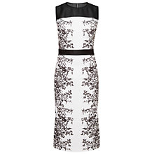 Buy Ted Baker Reihan Illustrated Elegance Dress, Black Online at johnlewis.com