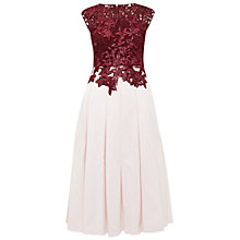 Buy Ted Baker Isla Applique Lace Bodice Dress, Oxblood Online at johnlewis.com