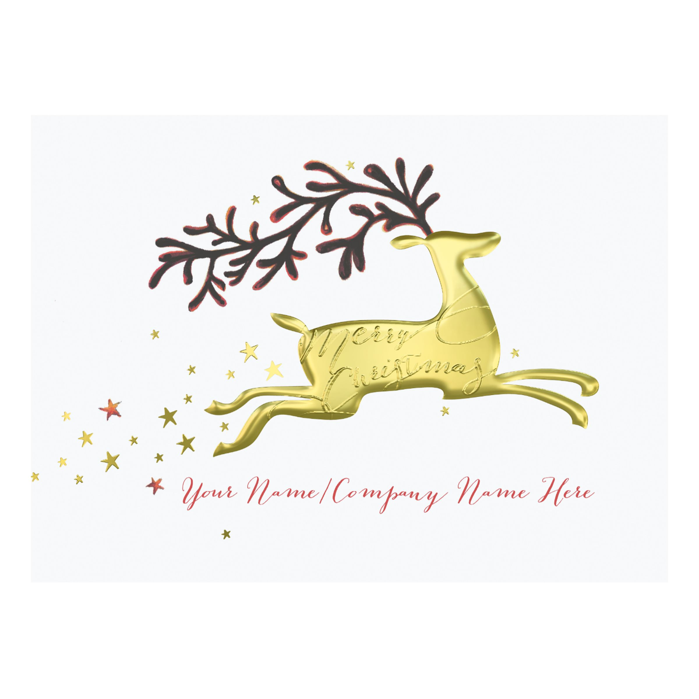 CCA CCA Personalised 'Dashing Through The Sky' Charity Christmas Cards