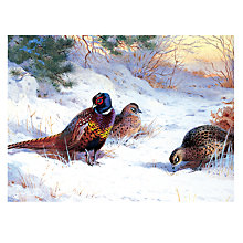 Buy CCA Personalised 'The First Fall Of Winter' Charity Christmas Cards Online at johnlewis.com