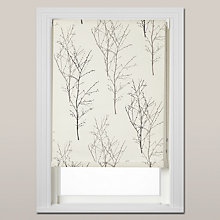 Buy John Lewis Birch Daylight Roller Blind, Chain Mechanism Online at johnlewis.com