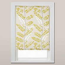 Buy John Lewis Malin Daylight Roller Blind, Chain Mechanism Online at johnlewis.com