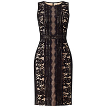 Buy Adrianna Papell Plus Size Embroidered Directional Stripe Lace Dress, Black/Bisque Online at johnlewis.com
