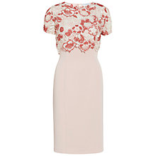 Buy Gina Bacconi Crepe Dress With Tonal Embroidery Overtop, Cinammon Online at johnlewis.com