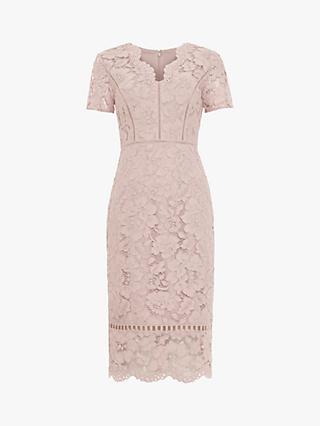 Phase Eight Trinity Corded Lace Dress, Dusty Rose