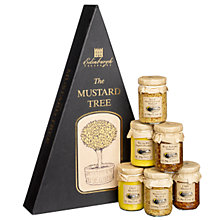 Buy Edinburgh Preserves Mustard Tree, 510g Online at johnlewis.com
