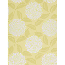 Buy Sanderson Wallpaper, Ceres DAMPCE106, Lime Online at johnlewis.com