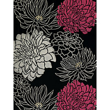 Buy Harlequin Wallpaper, Divine 30481, Pink / Black Online at johnlewis.com