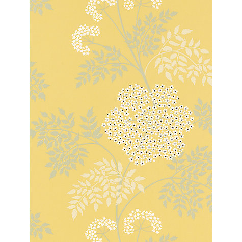 Buy Sanderson Cow Parsley Wallpaper Dopwco105 Chinese