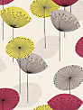 Sanderson Dandelion Clocks Wallpaper, DOPWDA102, Blackcurrant