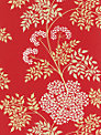 Sanderson Cow Parsley Wallpaper, DOPWCO102, Scarlet