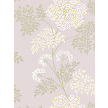 Buy Sanderson Cow Parsley Wallpaper, DOPWCO103, Amethyst Online at johnlewis.com