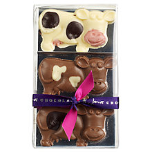Buy James Chocolates Chocolate Cows, 60g Online at johnlewis.com