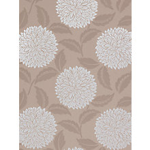 Buy Sanderson Wallpaper, Ceres DAMPCE102, Mocha Online at johnlewis.com