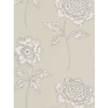 Buy Sanderson Anemone Wallpaper, DIOWAN105, Mushroom Online at johnlewis.com