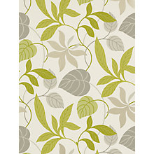 Buy Sanderson Wallpaper, Folia DIOWFO102, Lime / Charcoal Online at johnlewis.com