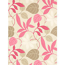 Buy Sanderson Wallpaper, Folia DIOWFO101, Pink / Chocolate Online at johnlewis.com