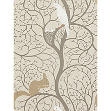 Buy Sanderson Squirrel & Dove Wallpaper, DVIWSQ101, Linen / Ivory Online at johnlewis.com