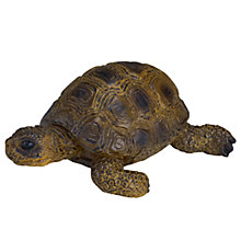 Buy Schleich Wild Animals: Tortoise Online at johnlewis.com