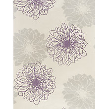Buy John Lewis Gerbera Wallpaper, Cassis Online at johnlewis.com
