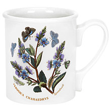 Buy Portmeirion Botanic Garden Mug, 0.26L, Speedwell Online at johnlewis.com