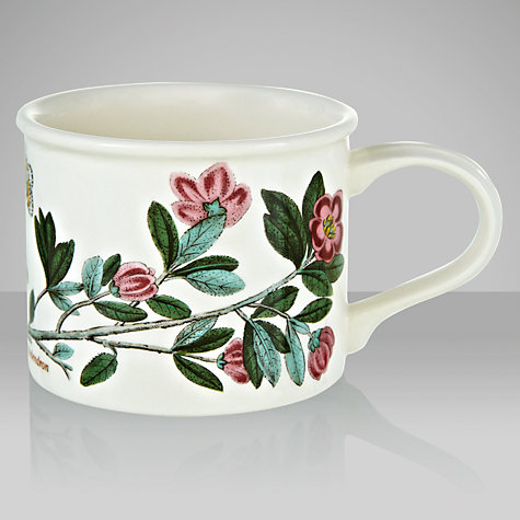 Buy Portmeirion Botanic Garden Drum Shape Teacup, 0.2L, Rhododendron Online at johnlewis.com